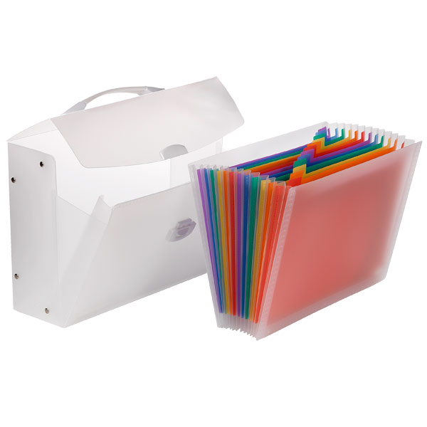 Translucent Expanding File Carrier