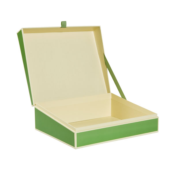 Document Box Lime