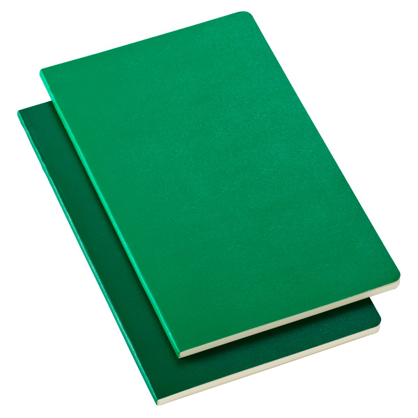 Large Moleskine® Volant Notebooks Green Pkg/2