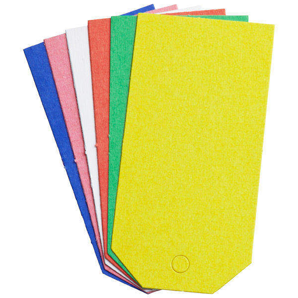 Tag-It Gift Tags Assorted Brights Pkg/6