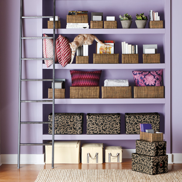 Image result for How Much Do You Want to Store storage solution