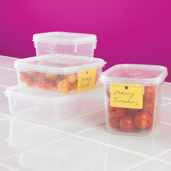 Tellfresh Oblong Food Storage The Container Store
